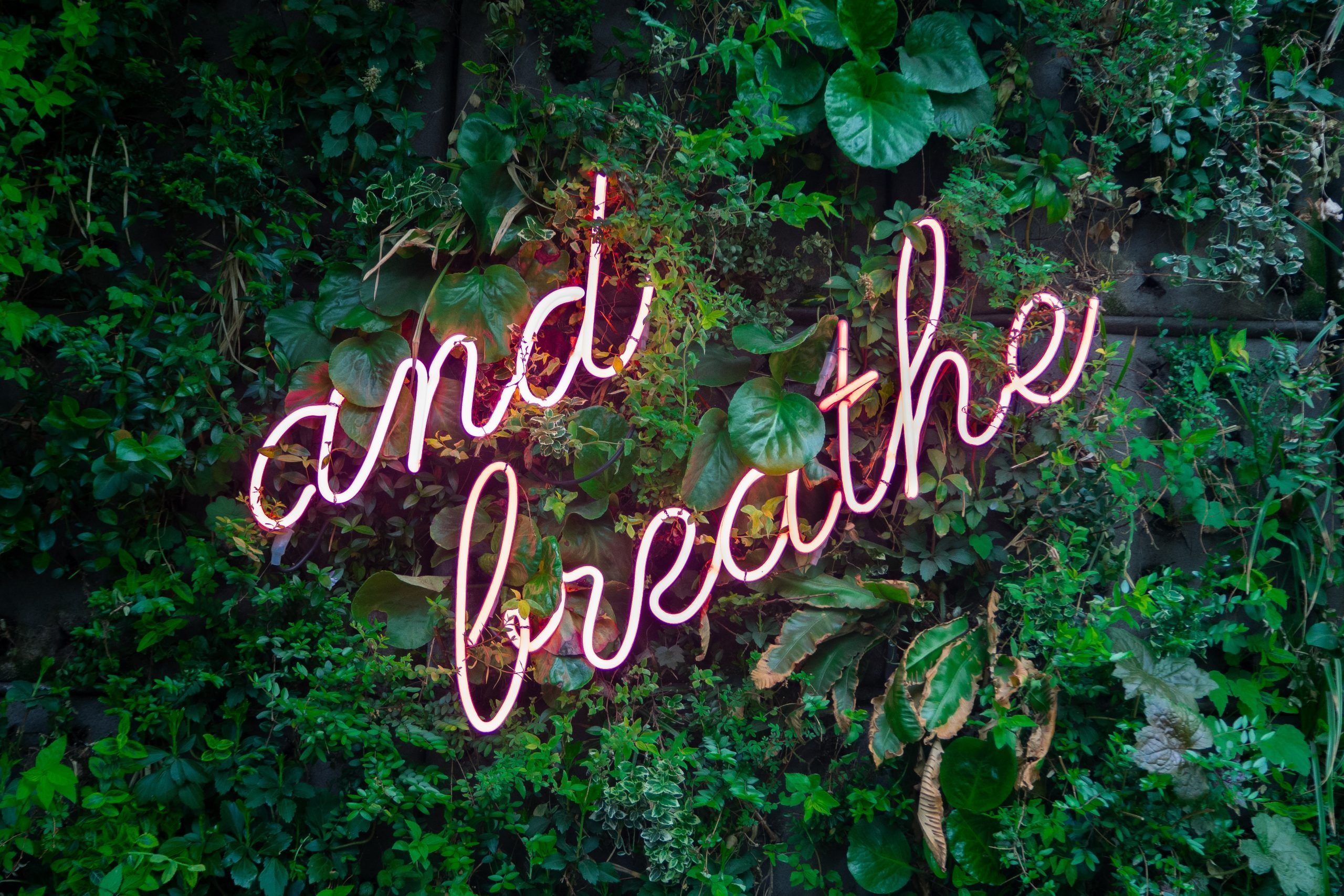 And Breathe Sign